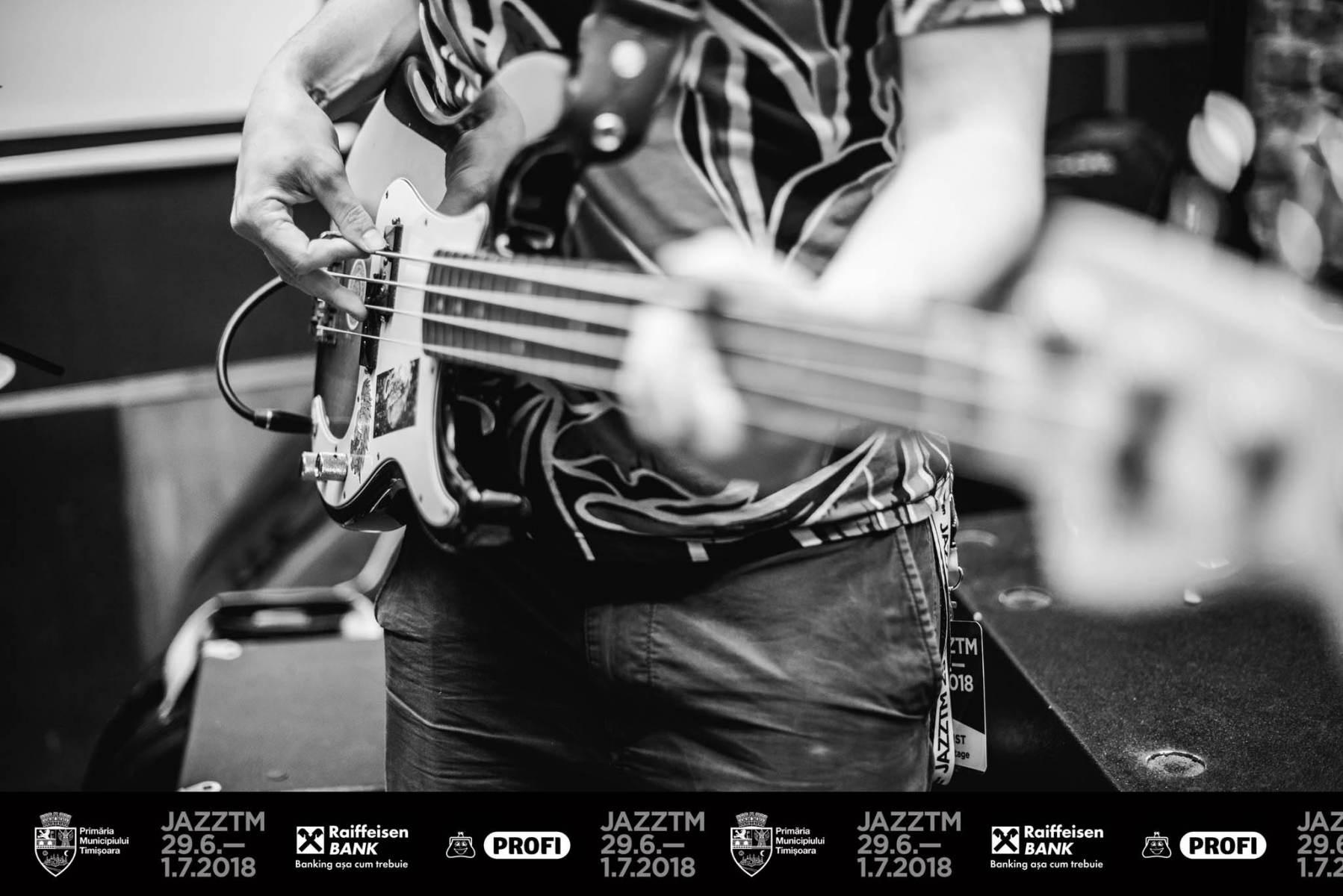 Michael Acker - My main toy. Fender Precision 4 Life
